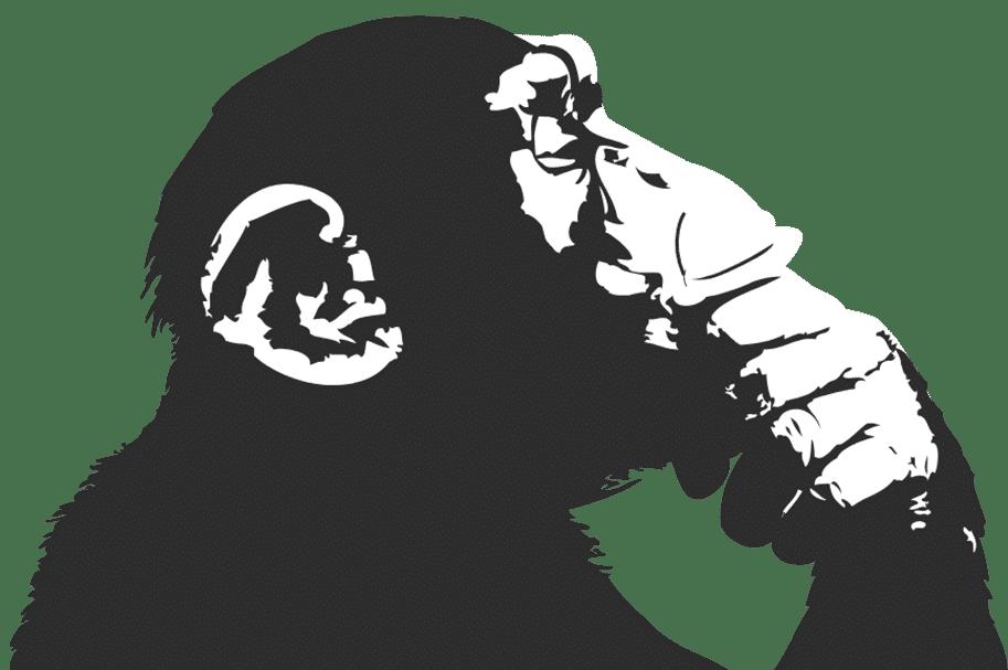 singe-inverse