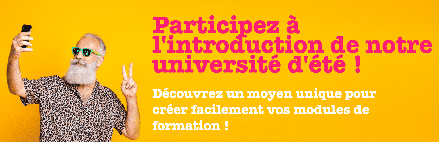 Université d'été microlearning