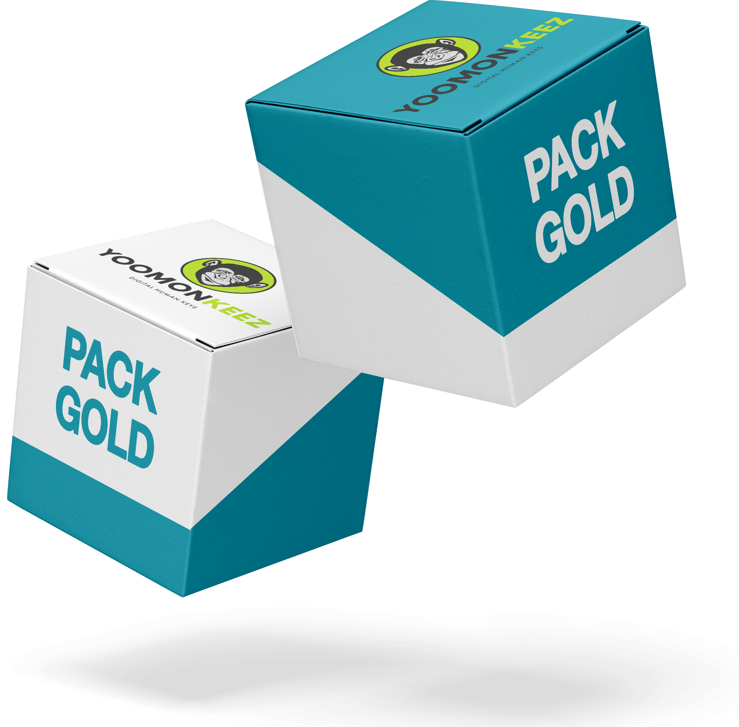 Pack Gold Microlearning