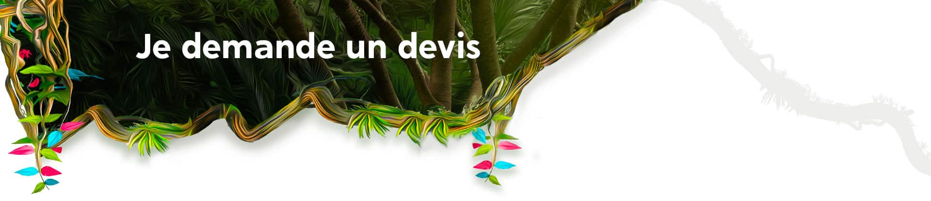 Devis microlearning