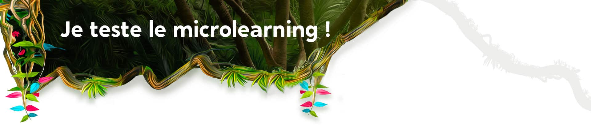 Test microlearning