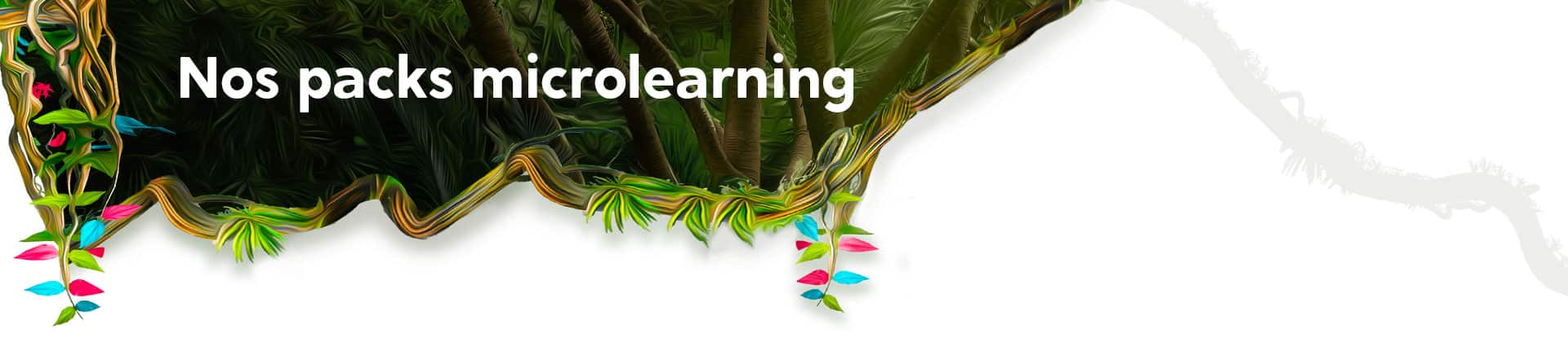 Nos tarifs microlearning
